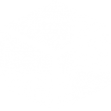solid cube 3D optical DG0005OPTL