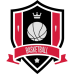 Basketball Seal DG0002BBAL