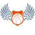 Hawk Basketball Graphic DG0041BBAL