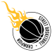 Street Basketball DG0105BBAL