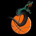 Snake Basketball DG0113BBAL