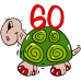 60 turtle DG0097BDAY